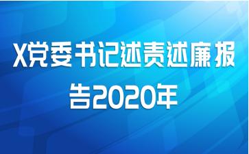 X党委书记述责述廉报告2020年