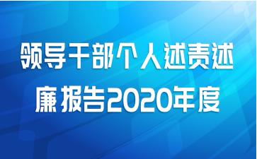 领导干部个人述责述廉报告2020年度