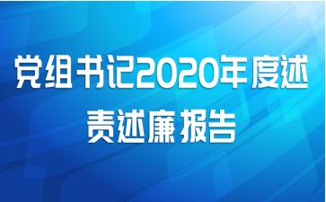 党组书记2020年度述责述廉报告