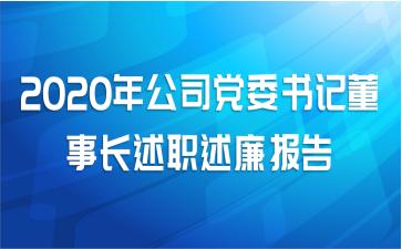 2020年公司党委书记董事长述职述廉报告