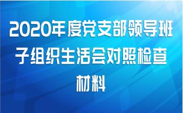 2020年度党支部领导班子组织生活会对照检查材料