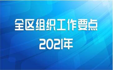 全区组织工作要点2021年