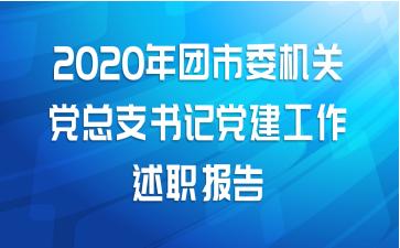2020年团市委机关党总支书记党建工作述职报告
