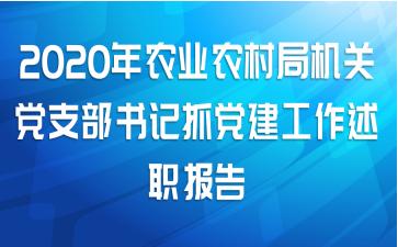 2020年农业农村局机关党支部书记抓党建工作述职报告