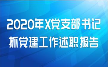 2020年X党支部书记抓党建工作述职报告
