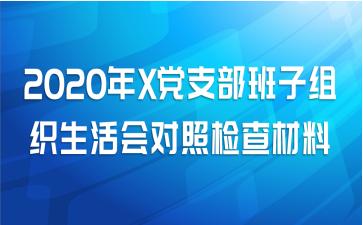 2020年X党支部班子组织生活会对照检查材料