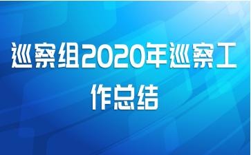 巡察组2020年巡察工作总结