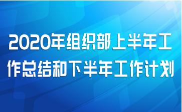 2020年组织部上半年工作总结和下半年工作计划