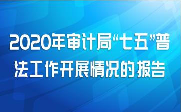 """2020年审计局""""七五""""普法工作开展情况的报告"""