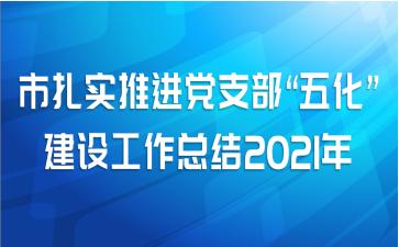 """市扎实推进党支部""""五化""""建设工作总结2021年"""